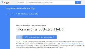 seo_robots_info